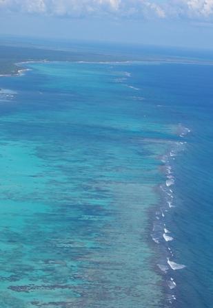 the-reef.jpg